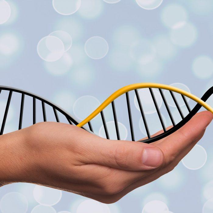 Badania genetyczne w profilaktyce przeciwnowotworowej