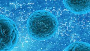 Odkryto typ komórek nowotworowych odpowiedzialny za powstawanie przerzutów