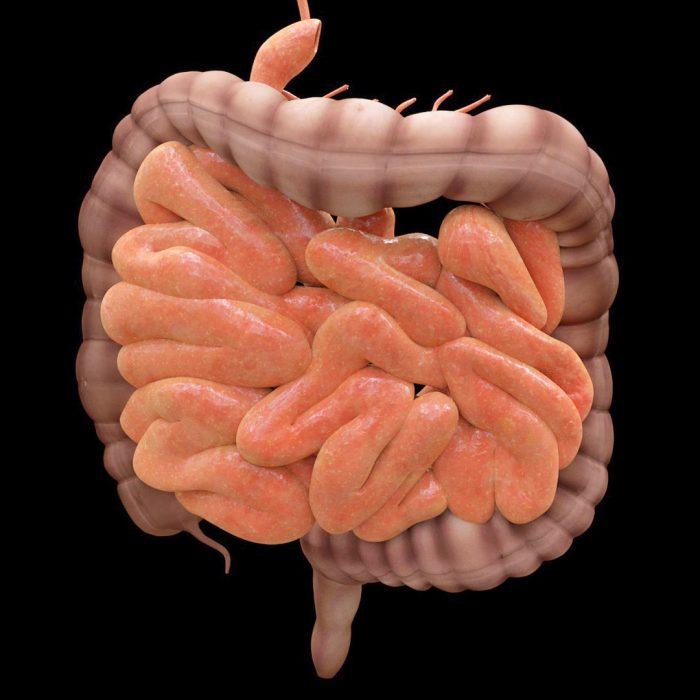 Rak jelita cienkiego a celiakia