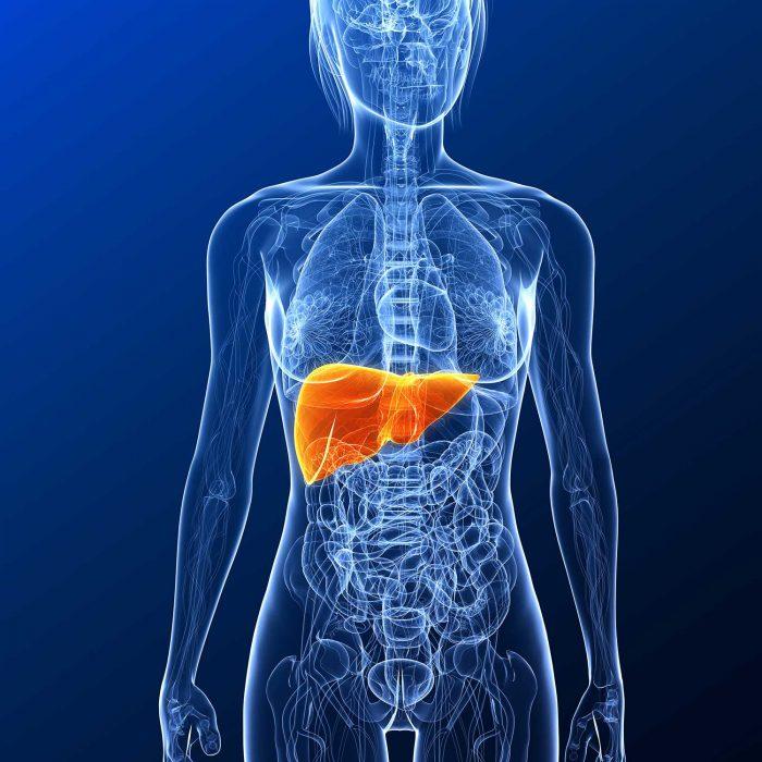 ASCO: terapia systemowa w zaawansowanym raku wątrobowokomórkowym